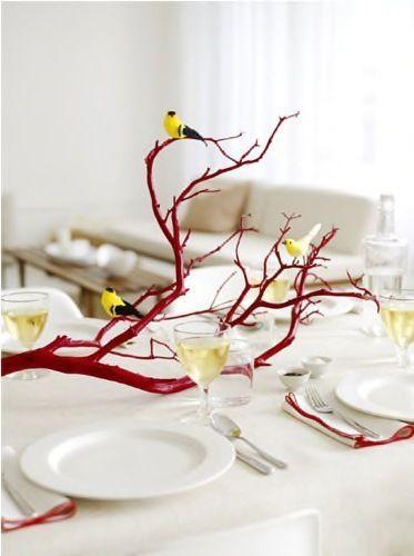 Ακούμπησε την φύση στο τραπέζι σου.